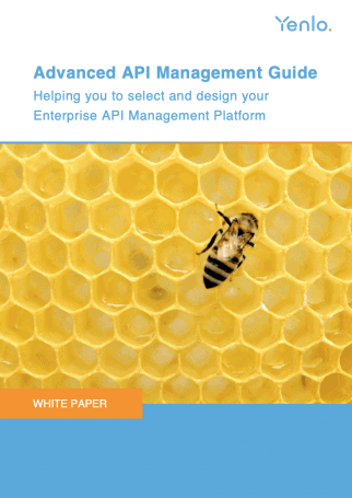 Whitepaper Advanced API Guide June 2020 Cover